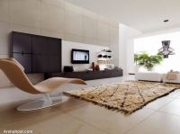 exclusive-elegant-living-room-designs-with-throw-away-rug