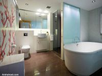 Indoor-outdoor-house-in-Paddington-Australia-bathtub