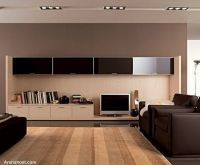 exclusive-elegant-living-room-designs-with-leather-sofa