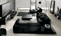 lavish-black-white-living-room-ideas