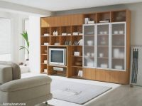 modern_tv_decor13