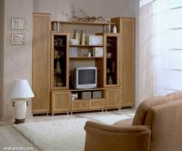 modern_tv_decor5