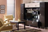 modern_tv_decor6