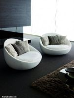 two-piece-elegant-sofa-set-for-living-room-decor